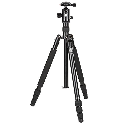 Sirui T-004X Aluminum Tripod with C-10S Ball Head, 8.8 lbs Capacity, 58'' Height, 4 Leg Sections, Black by Sirui