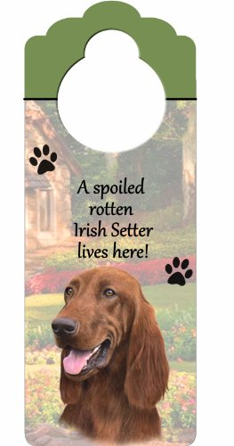Irish Setter Wood Sign