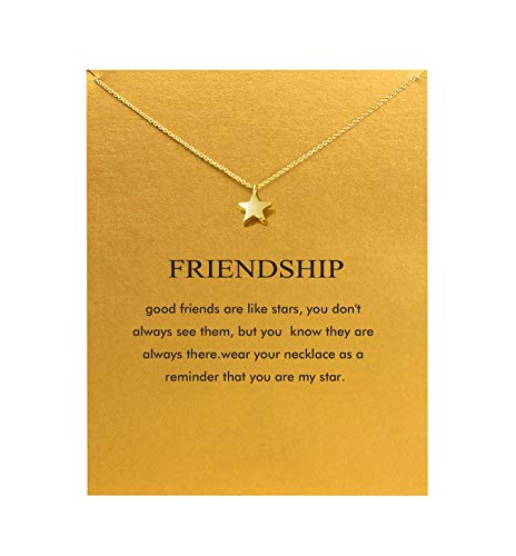 Hundred River Star Necklace Friendship Necklace with Message Card Gift Card (Star 2)