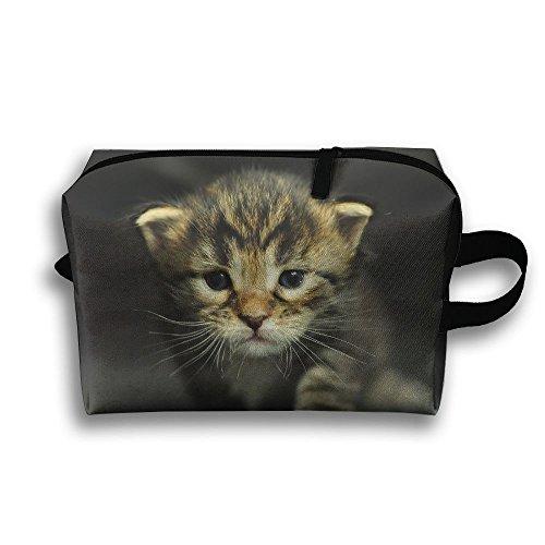 kitten dressed up - 6