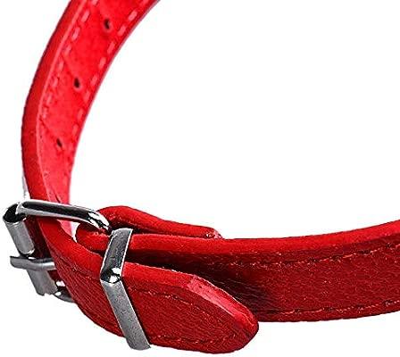 CAOQAO - Collar con pañuelo para Perro, pañuelo Ajustable para ...