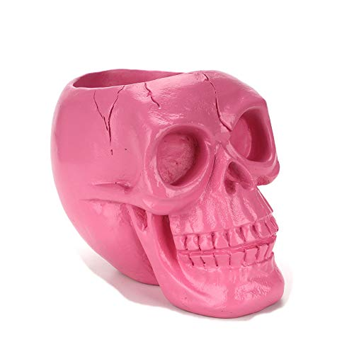 (Skull Pen Holder/Skull Makeup Brush Holder/Pen Holder/Dressing Table Office Desk Storage Box/Green Plant Flower Pot/Halloween)