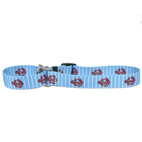 Stripe Martingale Dog Collar - Yellow Dog Design Anchors On Blue Stripes Martingale Dog Collar 1