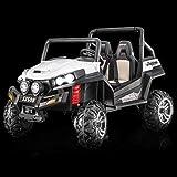 Ford Ranger Wildtrak 4X4 LCD Luxury, Coche eléctrico para niños, 2.4 ...