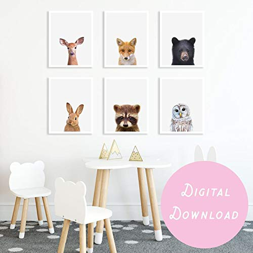 Fox Animal Digital Art Poster Print T863 A4 A3 A2 A1 A0 