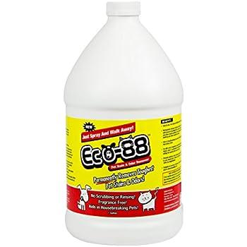 Amazon Com Eco 88 Pet Stain Amp Odor Remover 1 Gallon