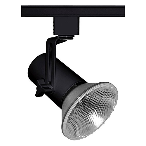 Juno Lighting Group T691BL Mini-Swivel Track Light, Black (Juno Black Finish)