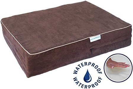 Go Pet Club Solid Memory Foam Orthopedic Pet Bed with Waterproof Cover, 55 by 38 by 4-Inch, Chocolate