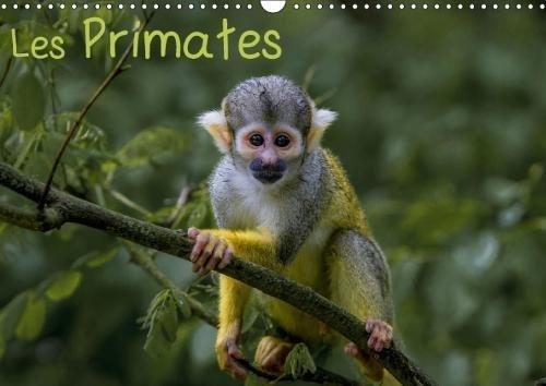 Les Primates 2018: Retrouvez Les Portraits Des Principaux Representant Des Primates. (Calvendo Animaux) (French Edition) by Calvendo Verlag GmbH