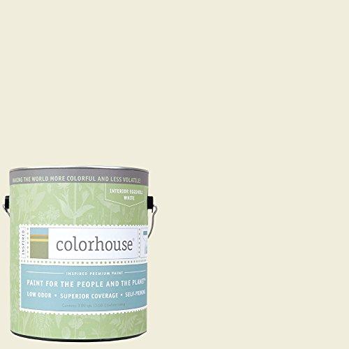 Inspired Eggshell Interior Paint, Imagine .04,