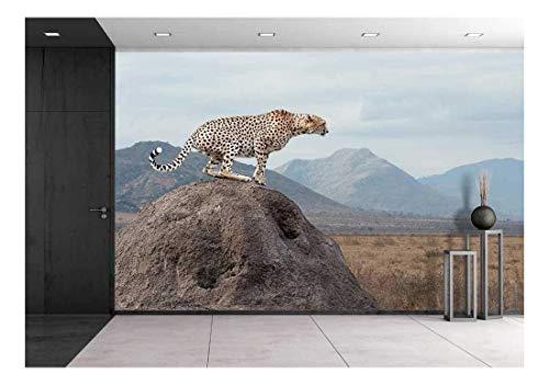 (wall26 - Wild African Cheetah, Beautiful Mammal Animal. Africa, Kenya - Removable Wall Mural | Self-Adhesive Large Wallpaper - 100x144 inches)