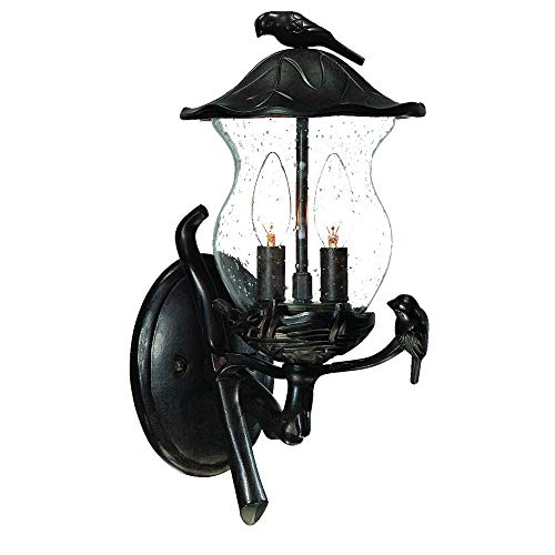 Acclaim 7551BC/SD Avian Collection 2-Light Wall Mount Outdoor Light Fixture, Black Coral
