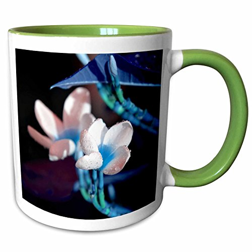 3dRose Susans Zoo Crew Photography Flowers - lei flower blue peach colorized - 15oz Two-Tone Green Mug (mug_184431_12) (Lei Two Flower Tone)