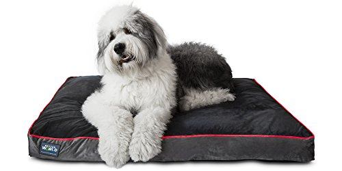 "First-Quality 5"" Thick Orthopedic Dog Bed 
