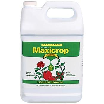 Amazon.com: Maxicrop extracto líquido de algas ...