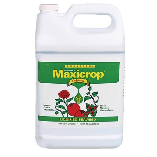 Maxicrop Original Liquid Seaweed Gallon