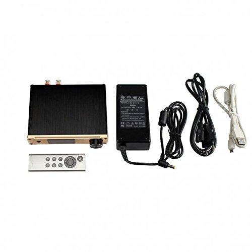 SMSL Q5 Pro amplificador digital dorado: Amazon.es: Instrumentos musicales