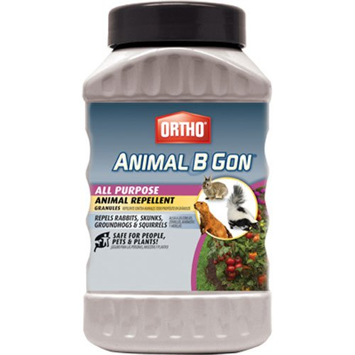 Ortho 489910 Animal B Gon All Purpose Animal Repellent Granules, 2-Pound (Squirrel, Groundhog, Rabbit and Other Small Herbivore Repellent) ()