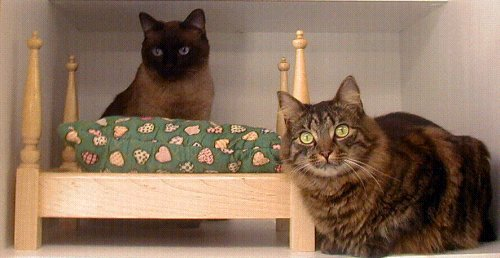25 x 18 x 27 Canopy Pet Bed