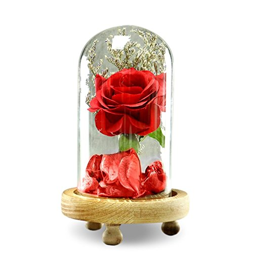 Flower In Glass Dome Great Gift Beauty And The Beast Artificial Flower (Beautiful Rose Flowers)
