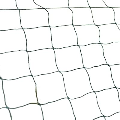 Best Choice Products 25' X 50' Net Netting for Bird Poultry Aviary Game Pens