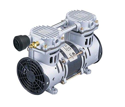 - Lifeline LL-RP60P Rocking Piston Air Compressor - High Efficiency Air Compressor for Lake and Pond Bottom Aeration