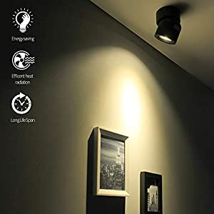 2 Packs Aisilan LED COB Adjustable Ceiling Spots Accent Lamp Surface Mounted Downlight 7W 3000K Warm White Black Aluminum Spotlight for Hallway Gallery Display Kitchen Living Room MSD52B7W3Kx2