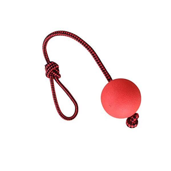 Ball and Rope Dog Toy-Dog Ball on String-Rope Rubber Solid Elastic Ball Bite-Resistant Pets Supplies Molar Training Tool for Dog Puppy 3