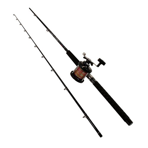Eagle Claw WMLCT86C2 W&M Lead Core Trolling Combo, 4.1 Gear Ratio, 8'6