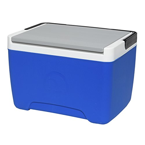 9 quart igloo cooler - 1