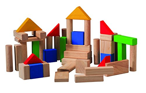 PlanToys Blocks (50 pcs)