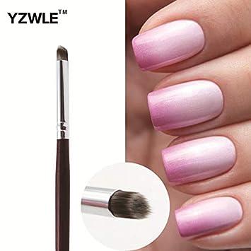 Amazon.com : Best Quality - Nail Brushes Professional Nail Art Brush ...