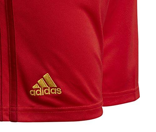 adidas RBFA H SHO Y Teamhosen-Kinder - vivred/powred/bogold Rot