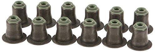 Victor Reinz Exhaust Valve Stem Seal Kit W0133-1893429-REI