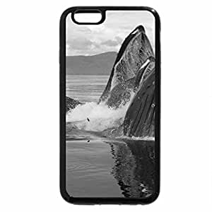 iPhone 6S Plus Case, iPhone 6 Plus Case (Black & White) - Humpback Whale
