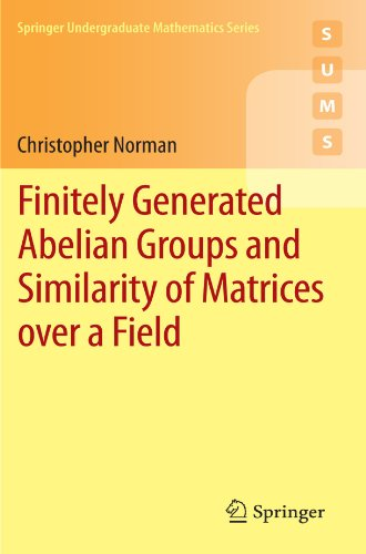 Finitely Generated Abelian Groups and Similarity of Matrices