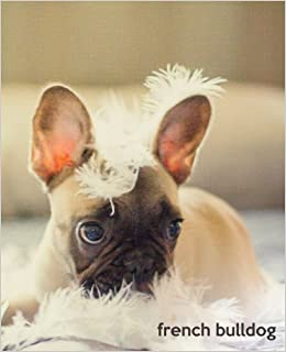French Bulldog A Gift Journal For People Who Love Dogs French