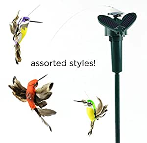 Able Garden Solar Fluttering Hummingbird, Feather Wings and Tail Flying Hummingbird on Stake, Assorted Colors