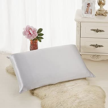 ALASKA BEAR - Natural Silk Pillowcase, Hypoallergenic, 19 momme, 600 thread count 100 percent Mulberry Silk, Queen Size with hidden zipper (1, Silver)