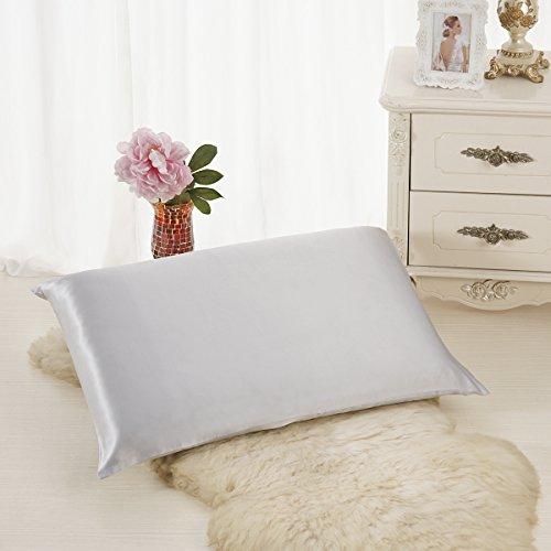 ALASKA BEAR Natural Silk Pillowcase, Hypoallergenic, 19 momme, 600 thread count 100 percent Mulberry Silk, Queen Size with hidden zipper (1, Silver)