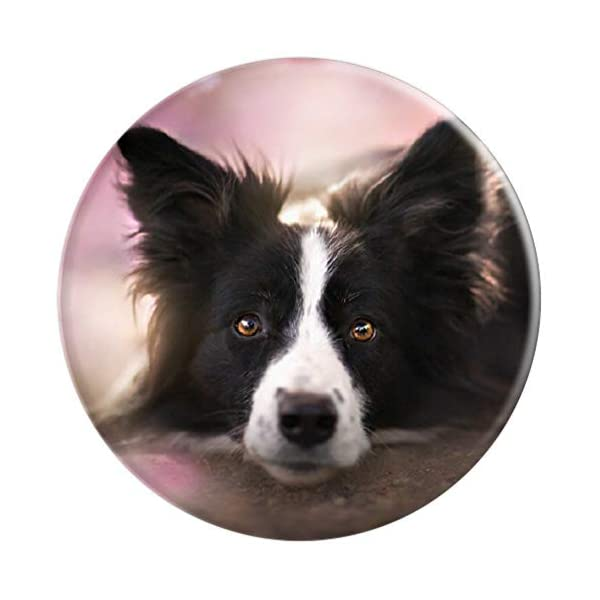 Border collie Dog - Border Collie Mom owner Birthday Gift PopSockets Grip and Stand for Phones and Tablets 3