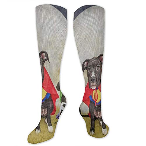 Socks Hipster Puppy Dog Dressed in Halloween Costumes Stylish Womens Stocking Holiday Sock Clearance for Girls