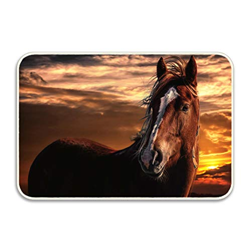 Horse Sunset Animal Beauty Brown Orange Customized Non-Slip Area Rugs Home Decor, Lovely Floor Mat Living Room Bedroom Carpets Doormats 36 x 24 inches 2