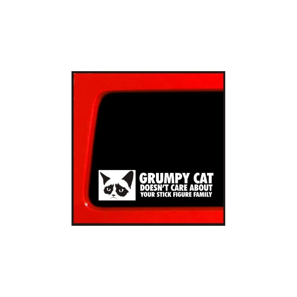 Grumpy Cat sticker Doesnt Care About Your Stick Figure Family funny decal sticker meme