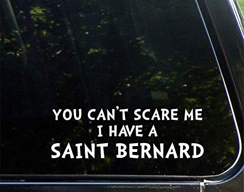 Car Decals Funny You Can't Scare Me I Have A Saint Bernard Vinyl Bumper Sticker Decoration for Laptop Truck 9 inch -