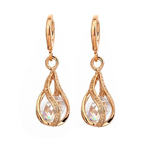 WensLTD 1 Pair Fashion Design Wonderful Gold Plated Colors Cubic Zirconia Dangle Earrings (Clear)