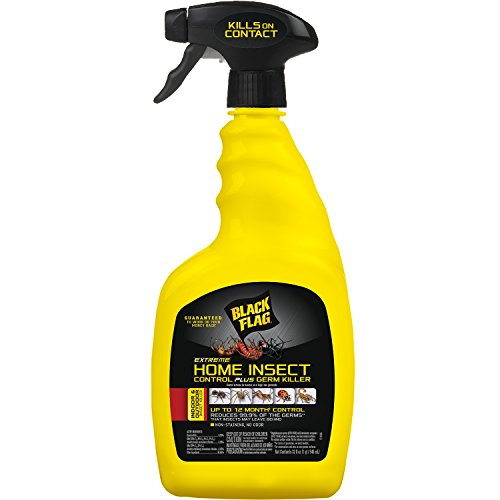 home insect control