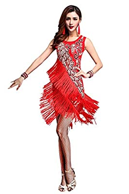 ZX Z&X Dancewear Women 1920s Gatsby Sequin Embellished Fringed Flapper Latin Dress