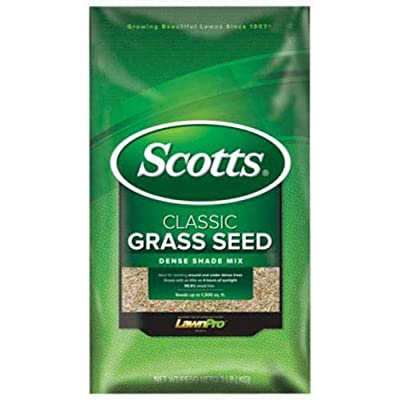 Scotts 17290 Classic Dense Shade Mix, 3 lbs : Garden & Outdoor
