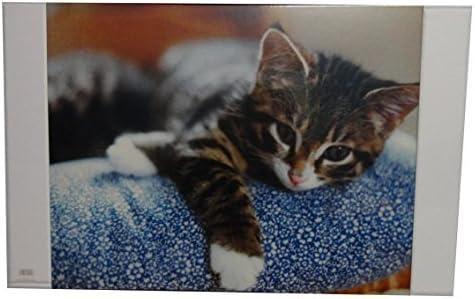 Schreibtischunterlage / Größe: 68x44cm / mit Katze